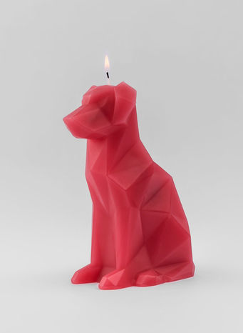 CANDELA PYROPET VOFFI, BERRY, small